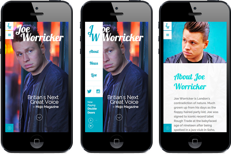 Joe Worricker mobile responsive views